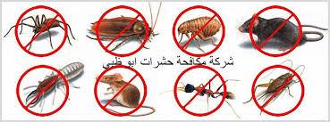 مكافحة حشرات فى ابو ظبى